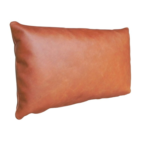 """Tossica 15"""" Leather Toss Pillow"""